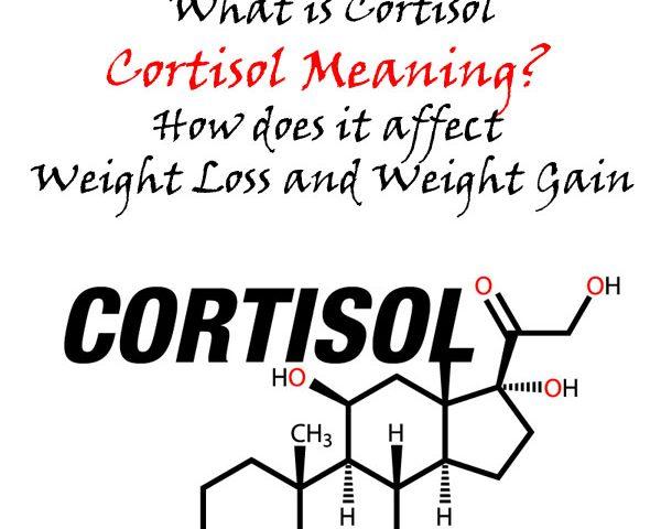 cortisol übergewicht