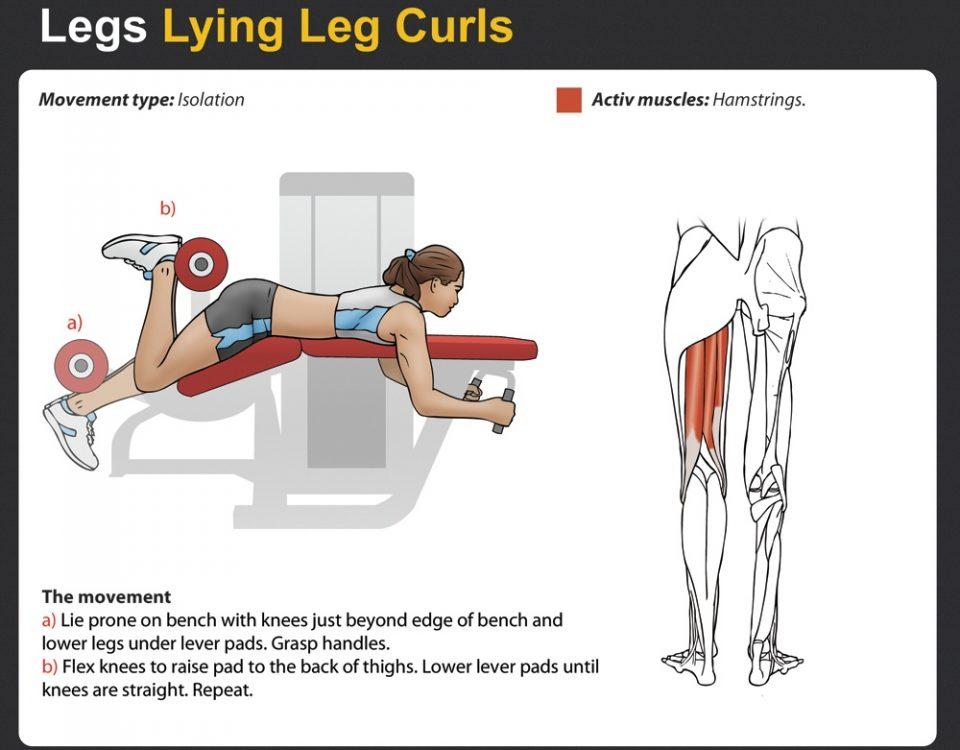 Lying Leg Curls