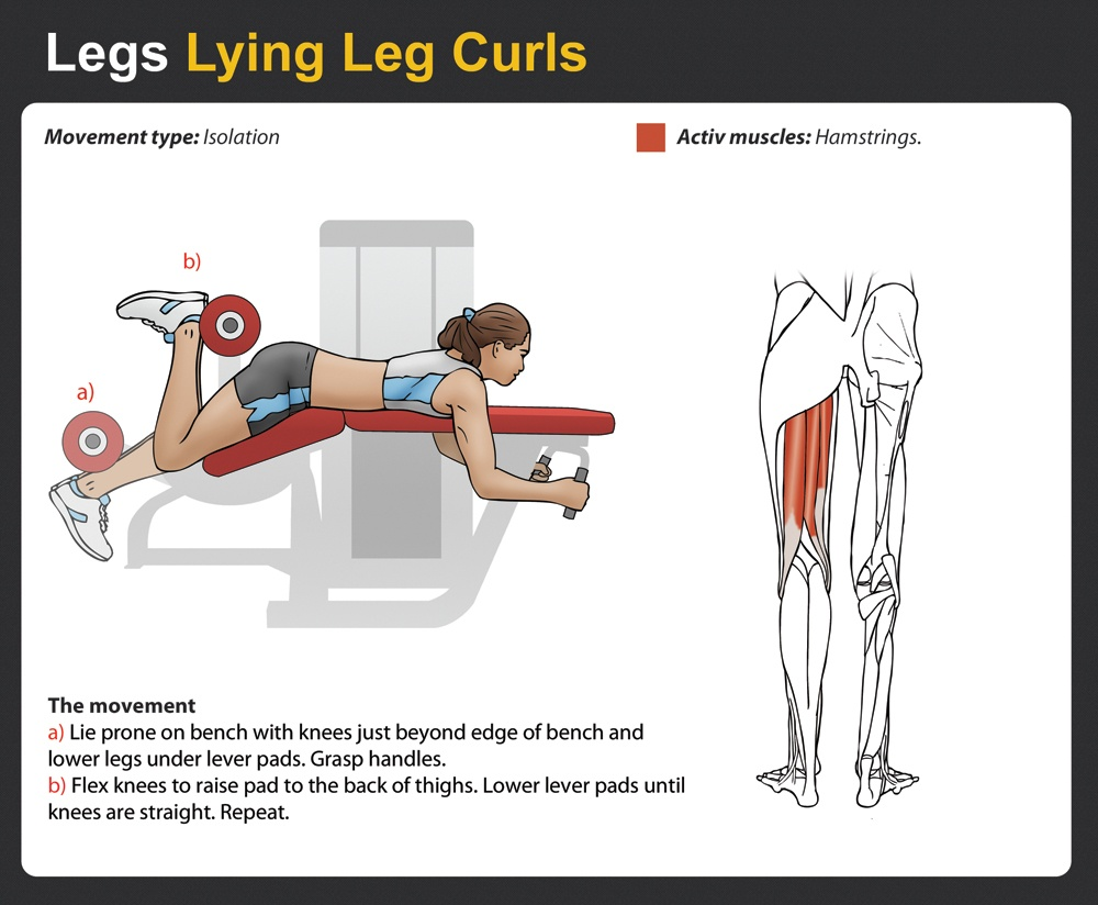 Lying Leg Curls - Complete Guide