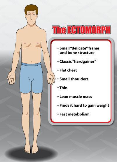 Body Type Ectomorph