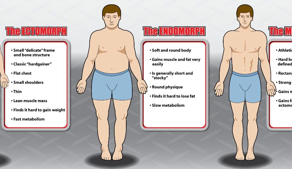 Determine your body type - Bodybuilding according to the 3 Body Types