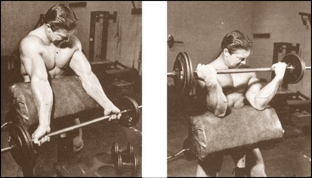 Larry Scott Arms - Biceps Workout