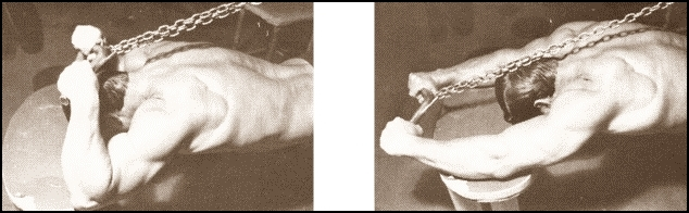 Larry Scott Arms - Triceps Workout