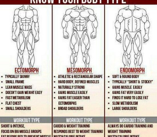 determine your body type