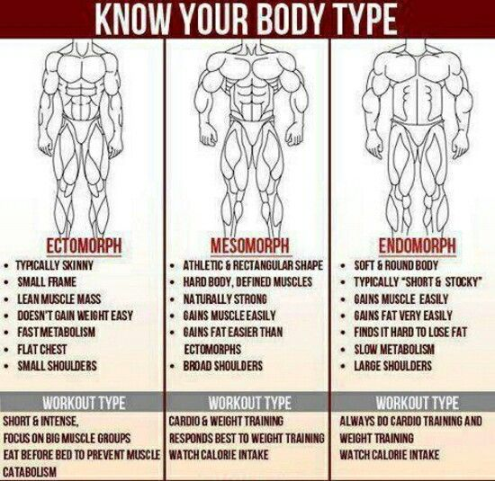 determine your body type: ectomorph, mesomorph, endomorph, Muscles
