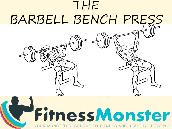 Barbell Bench Press - Muscles worked, Benefits and How to perform right
