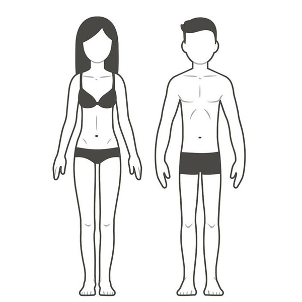 Male and Female Ectomorph Body type
