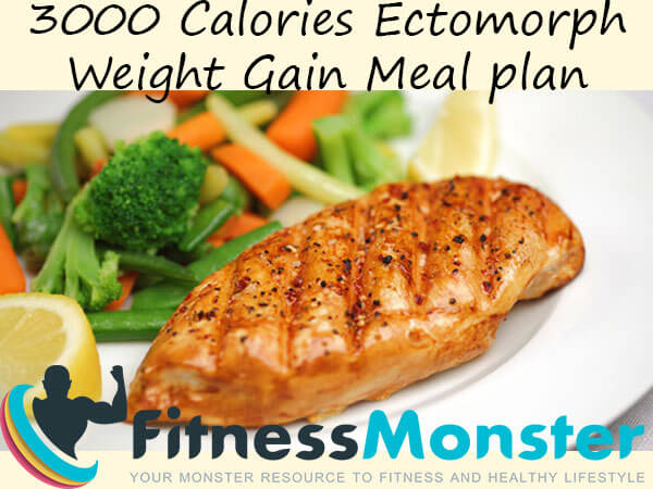 3000 Calories Sample Ectomorph Meal Plan